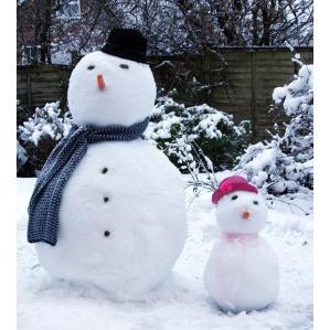 snowman15_1554883i